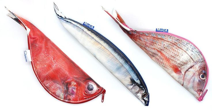 """Photorealistic """"anatomical"""" fish pencil-cases / Boing Boing"""