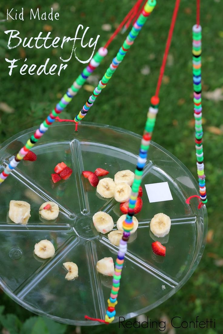 A butterfly feeder that is easy to make for an insect activity, preschool activity, kindergarten insect lesson. Use with Apologia Flying Creatures http://bit.ly/ApologiaZoo1