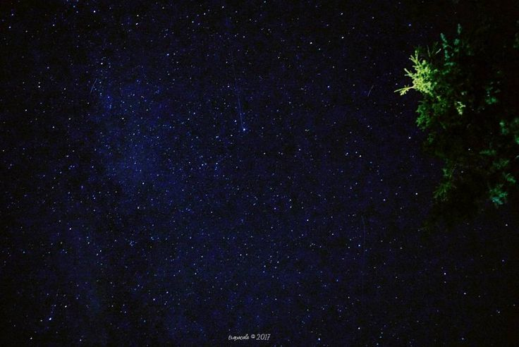 El pasado 12 de Agosto con motivo de las Perséidas decidí coger la cámara y hacer alguna foto a ver si pillaba estrellas fugaces. La verdad es que tengo que aprender a hacer fotos a las estrellas (otro debe) pero creo que alguna fugaz he conseguido no? Si la vista no me falla yo contabilizo un par de rastros. Y vosotros? Dame una alegría   #tropoPhoto #star #nightphotography #night #ShootingStar #perseidas #SanLorenzo #lagrimas #vsco #vscogood #vscogrid #vscohub #vscocam  #photooftheday…