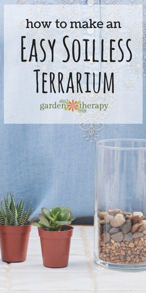 basic terrarium