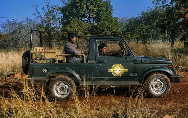 Jeep Safari at Panna Ken river lodge's 4x4 open Gypsy used for Jungle Safari. The guests are accompanied with trained naturalists.
