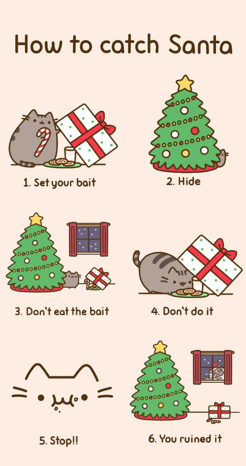 17 best pusheen images on Pinterest | Pusheen cat, Grumpy cat and ...