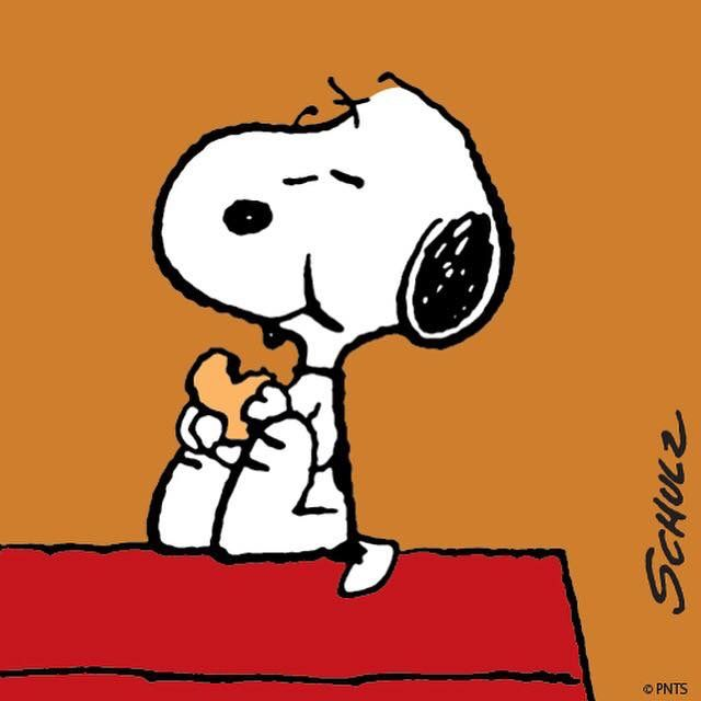 Image result for snoopy eating cookies