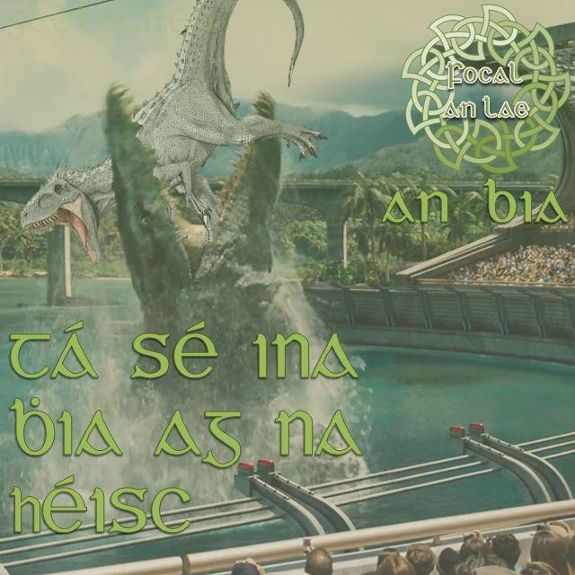 Tá sé ina bhia ag na héisc. (He is feeding the fishes)