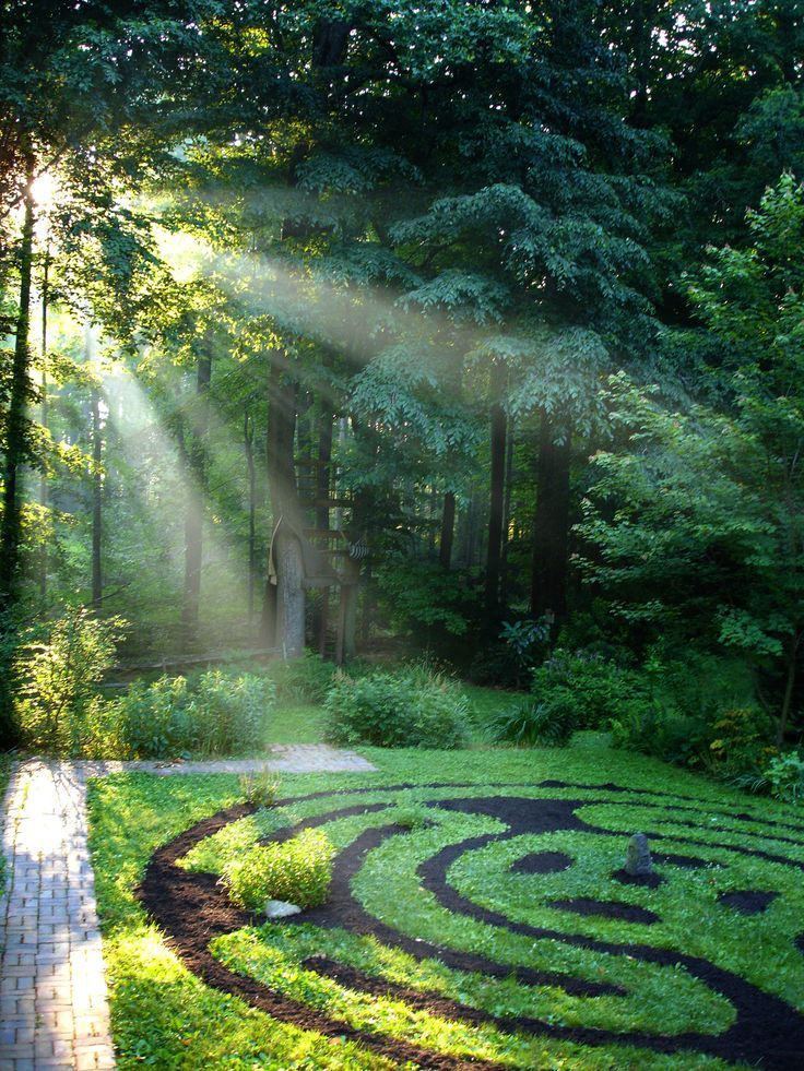 Sacred garden; green; leaves; trees; nature; labyrinth; sunlight; sun; ground; woods