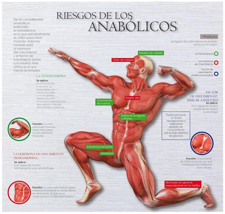 te mostramos en esta infografia los riesgos del uso de anabolicos. Olvidate de los atajos !