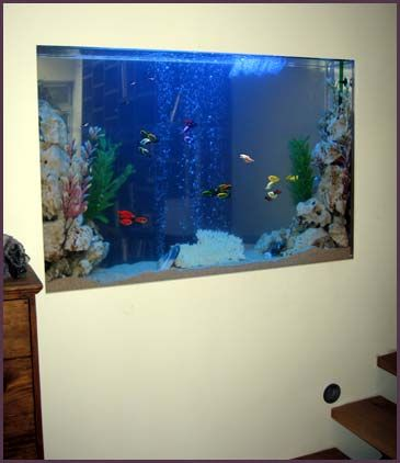 25 best ideas about fish tank wall on pinterest amazing for Good aquarium fish