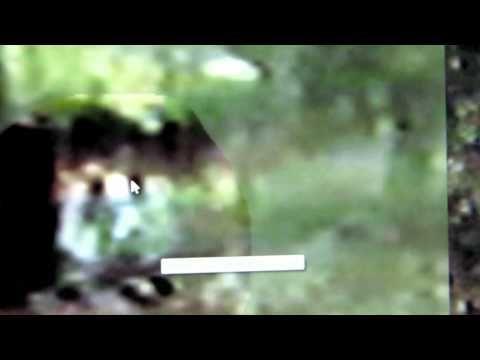 M.K. Davis revistis the White Bigfoot video.mp4