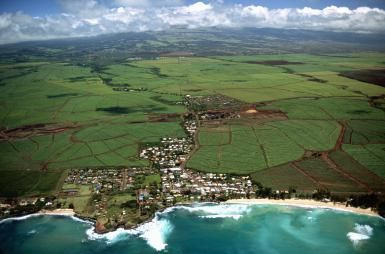 What to See and Do and Where to Shop in Kahului, Maui