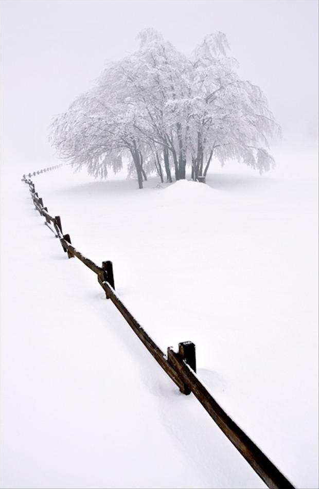 untouched snow, beautiful winter scene | <<< repinned by www.BlickeDeeler.de | Follow us on www.facebook.com/BlickeDeeler.de: