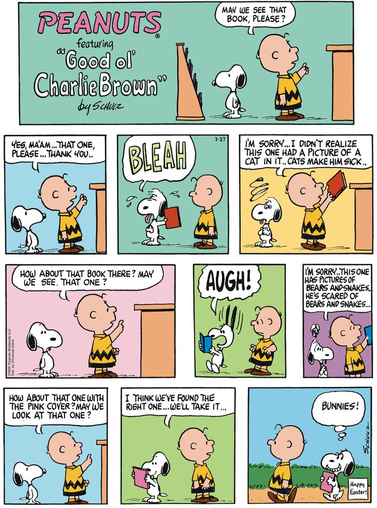 A short biography of cartoonist charles schulz