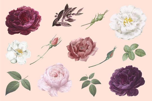 Baixe Desenhos De Flores Vintage Gratuitamente Flower Drawing How To Draw Hands Vintage Flowers