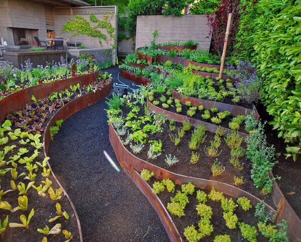 Designing A Vegetable Garden With Raised Beds raised bed designs vegetable gardens sensational design 20 garden layout in beds garden Find This Pin And More On Raised Beds And Edible Gardens Vegetable Garden Design