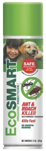 "Camping Packing :""EcoSMART 33103 Organic Ant and Roach Killer : 14-Ounce"" ** Startling review available here"