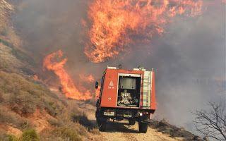 Έψηνε παϊδάκια... και έβαλε φωτιά σε δάσος.