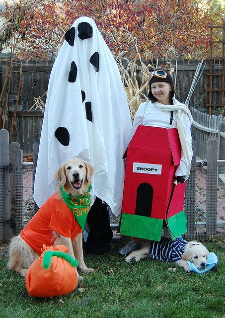 On pinterest snoopy costume charlie brown and charlie brown costume