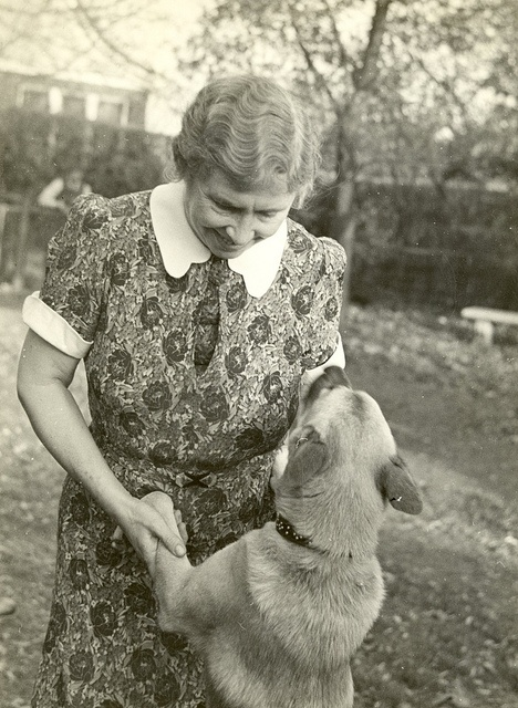 Helen Keller with her Akita dog, Kamikaze, circa 1938. Visit the Perkins Archives Flicker page: http://www.flickr.com/photos/perkinsarchive/collections/