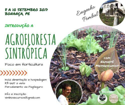 Curso de Agrofloresta Sintrópica em Bonanza, 8 a 10 Setembro – 15/08/2017 | Ecogreen