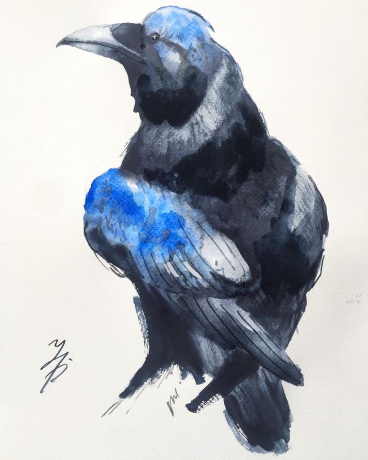 Ворона картинки акварелью