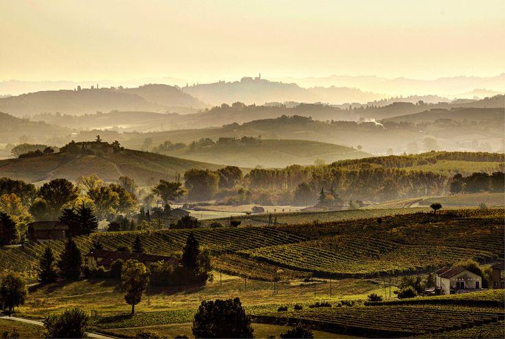 Have you ever seen such a #picturesque #landscape through #vineyards and hills? Monferrato: discover it. Hai mai ammirato un #paesaggio così #suggestivo, tra #vigneti e colli? Il Monferrato: un luogo da scoprire.