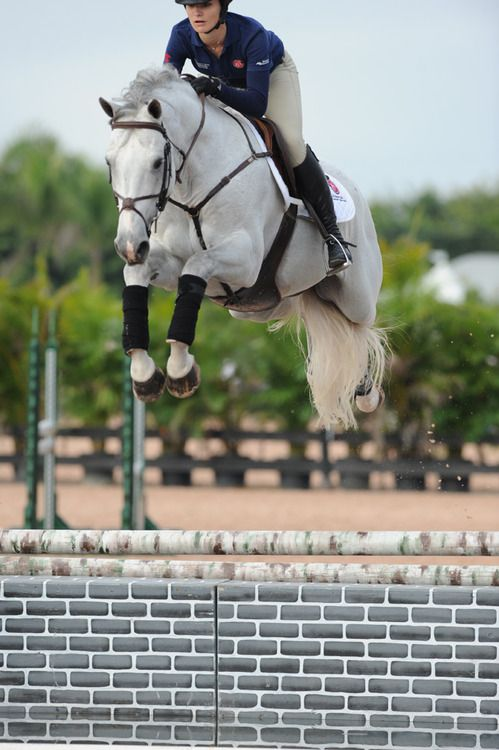 how to jump a horse correctly