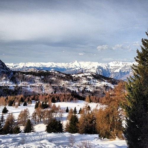 Monte Bondone (Trento, Italy)     #italy #trento #trentino #mountains #snow #trees #white #winter #xmas #sky