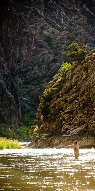 Fly fishing in the Black Canyon, Colorado.