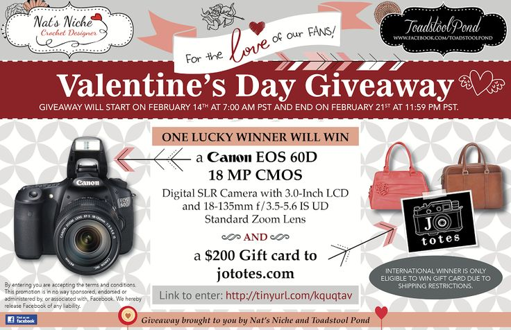 Enter to win a 60D Canon Camera (or $899 amazon gift card) PLUS $200 gift card to www.jototes.com