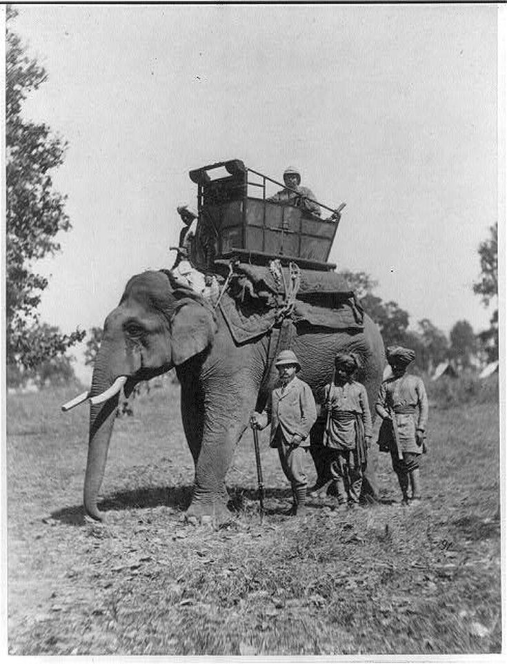British in Colonial India Photo Essay: The Prince of Wales Hunts from Elephant-back, 1875-6