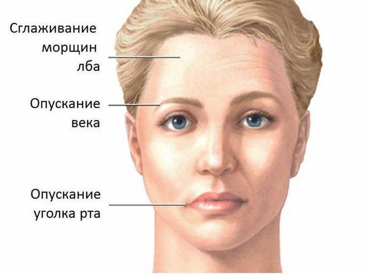 Данный блок упражнений направлен на коррекцию возрастных изменений лица, а также для избавления от лицевой асимметрии. При выполнении этих упражнений не применяйте силу. Если Вы почувствуете боль, нем…