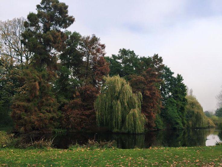 #vondelpark #amsterdam #netherlands #travel #traveladdict #weekend #getaway
