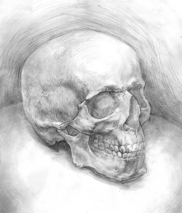 Only Best 25 Ideas About Skull Drawings On Pinterest: 25+ Best Ideas About Simple Skull Drawing On Pinterest