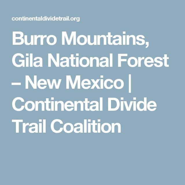 19 best state of tennessee float project images on pinterest burro mountains gila national forest new mexico continental divide trail coalition fandeluxe Gallery