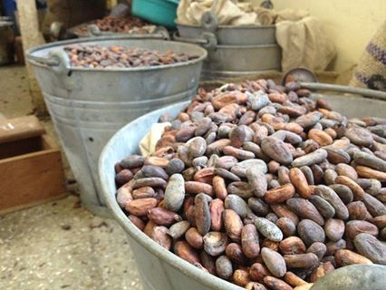 Cocoa beans in the shipping yard. I absolutely live this photo I took!