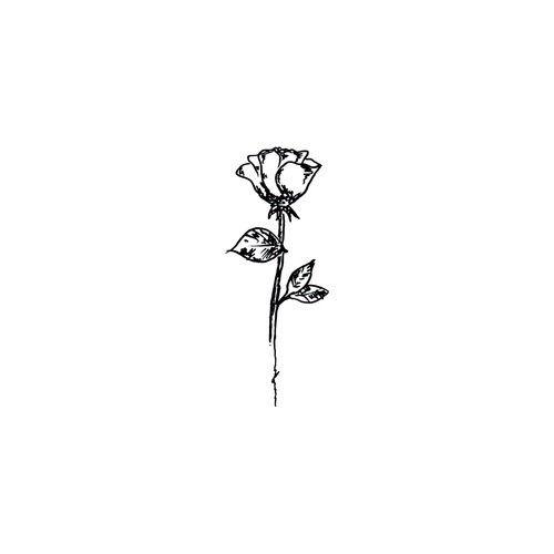 Imagem de art, rose, and drawing