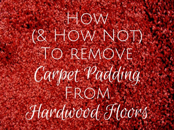 Rubbery carpet padding can fuse onto a hardwood floor. After 26 hours of labor, I found out how (and how not) to remove carpet padding from hardwood floors.
