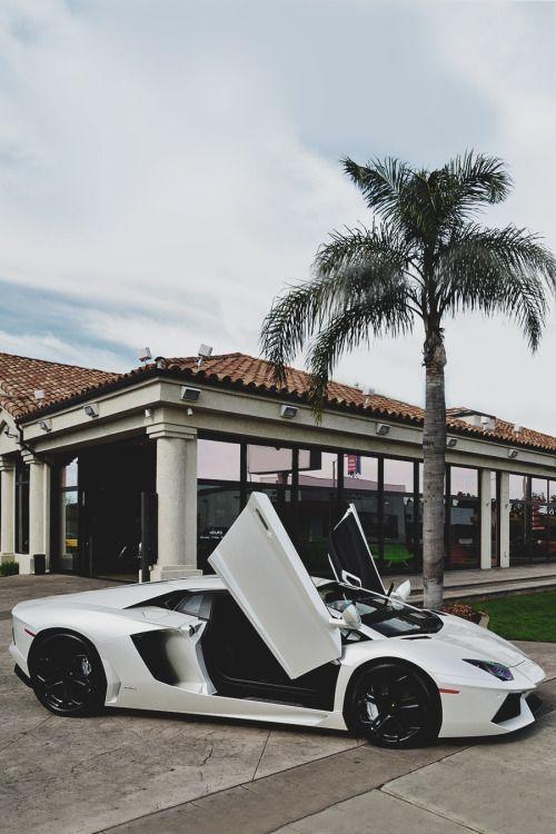 envyavenue: Lamborghini Aventador LP700