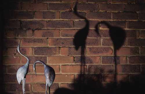 Shadow lighting