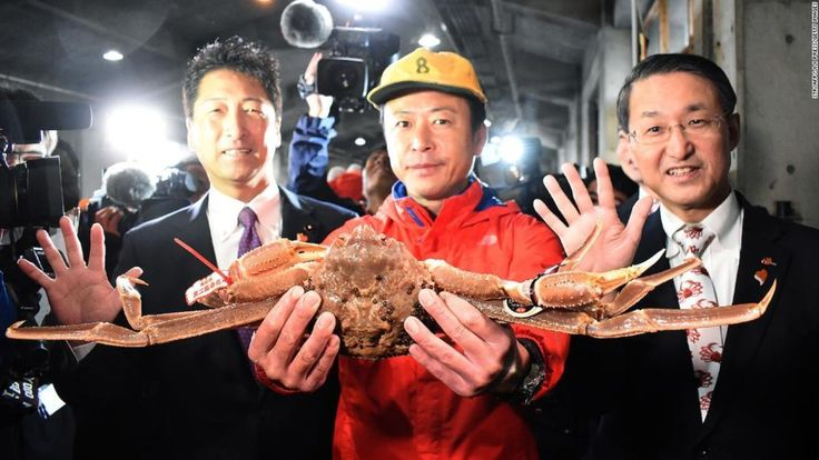 Snow crab sells for recordbreaking 46,000 in Japan http