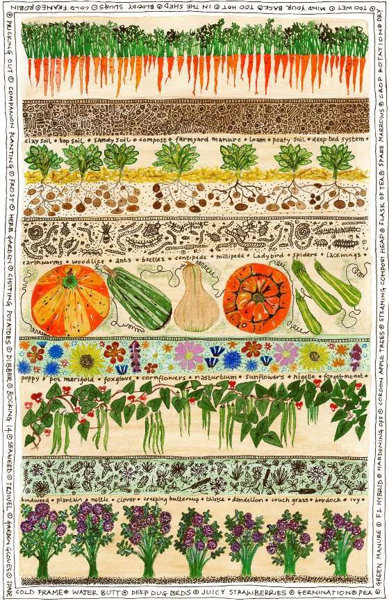663 best veggie collage art images on pinterest collage for Vegetable patch
