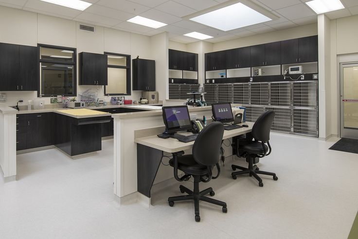 Virtual Tour | Center for Veterinary Specialty Care