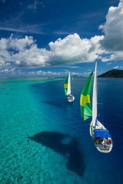 Crystal clear sea, French Polynesia -