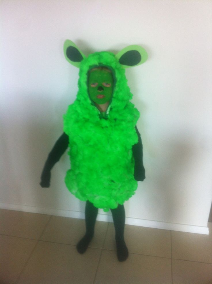 -- AUSTRALIAN -- The Green Sheep / Where is the Green Sheep by Mem Fox