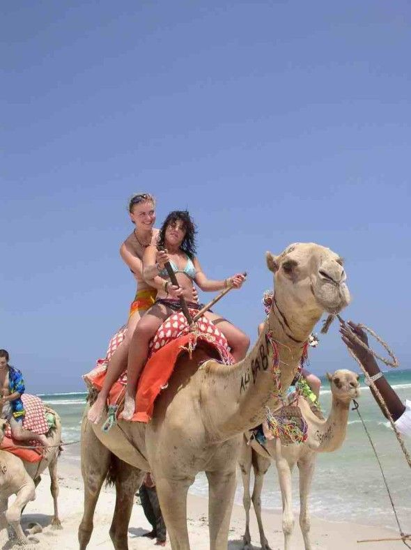 Funny Camel Ride