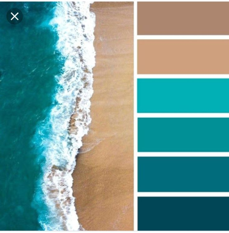what color is teal - 736×736