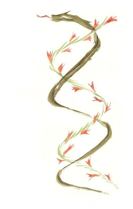 A DNA helix of joy and mortality. An interesting idea for a tattoo.