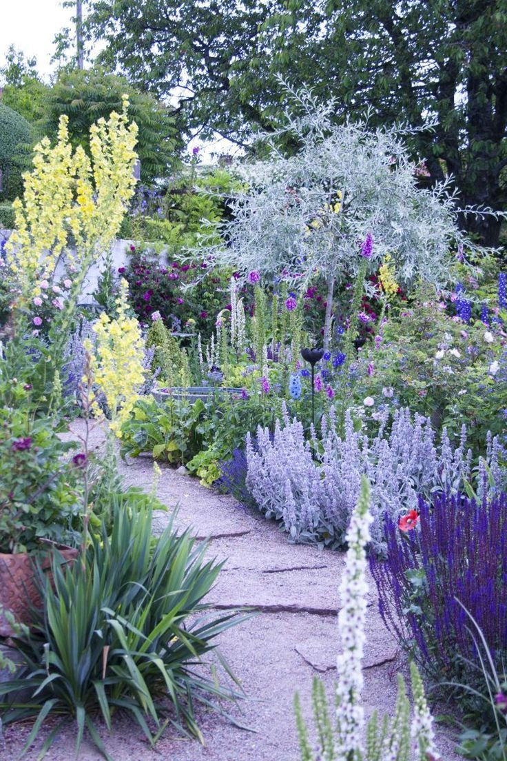 Landscape Border Designs 10 Superb Garden Edging Ideas Front