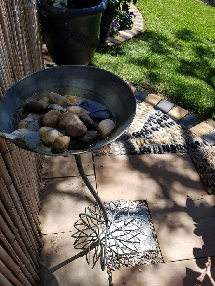 Water for bees..just add stones to bird bath!