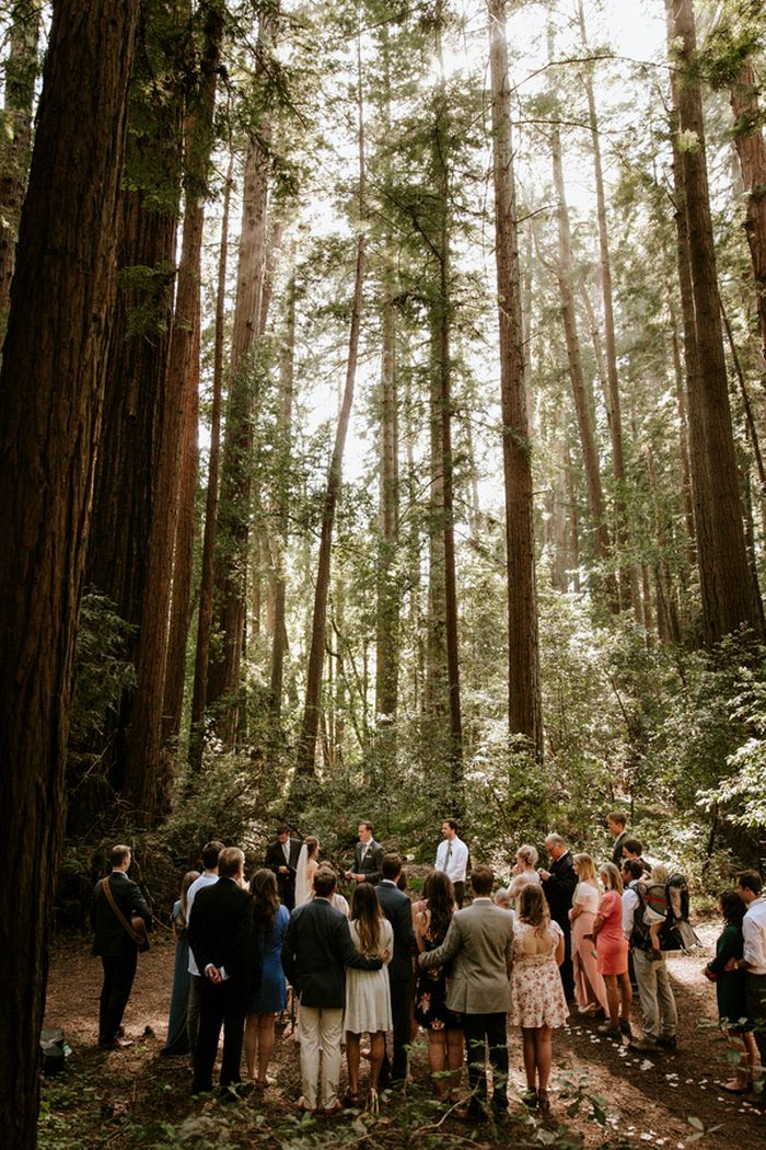 intimate wedding packages atlantga%0A Hannah and Rocky u    s Intimate Redwoods Wedding