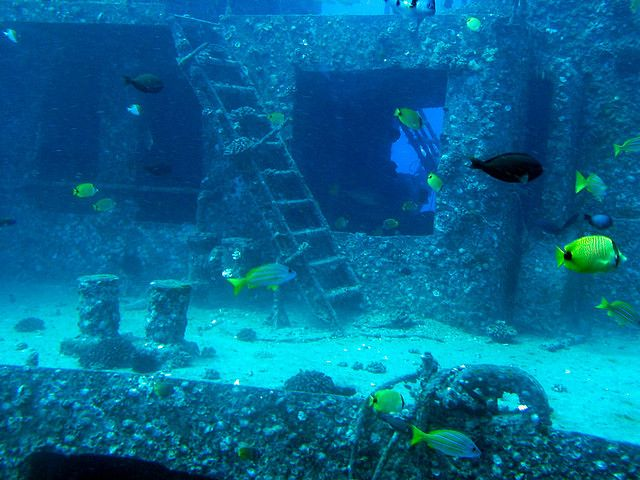 390 Best Under The Sea Wrecks Amp Relics Images On